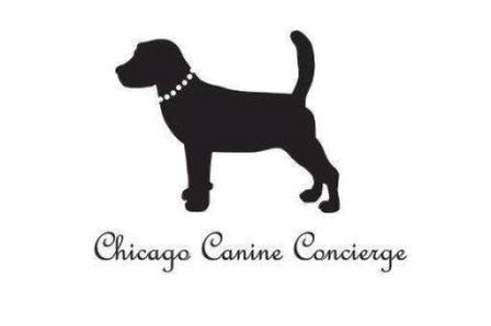 Chicago Canine Concierge Find Chicago Pet Services